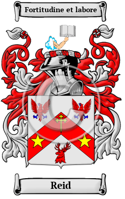 Reid Name Meaning Family History Family Crest Coats Of Arms